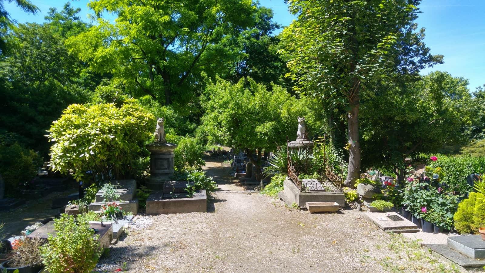 cimetière des chiens asnières