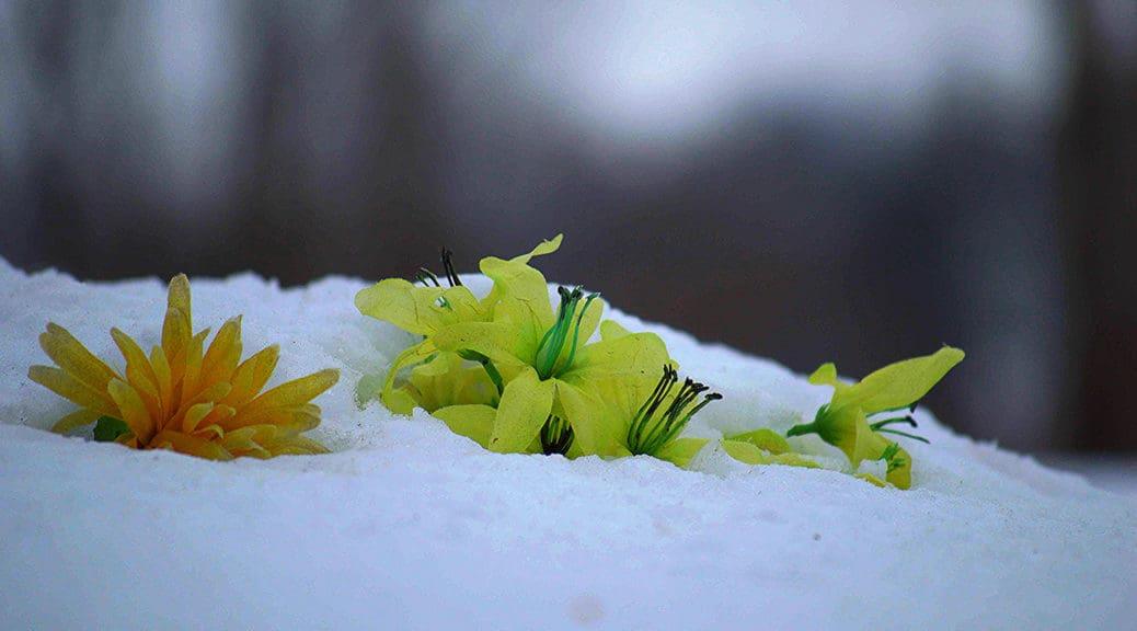 morosité hiver