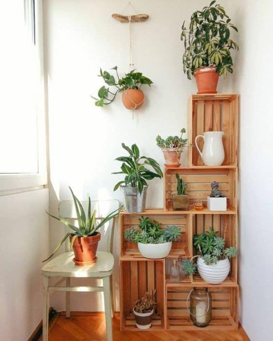 étagères caisse jardin plantes intérieur