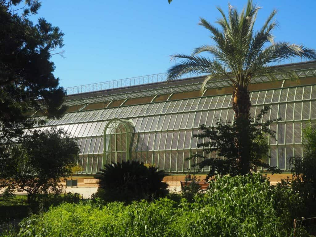 serre jardin des plantes montpellier